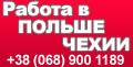 Водитель | оператор спецтехники | автокрановщик | работа в Чехии | эмиграция, фото 1