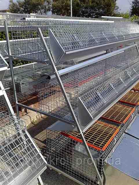 Обладнання для тваринництва та птахівництва, зображення 1