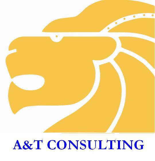 A.T. Consulting – еффективная оптимизация Вашего бизнеса!, зображення 1