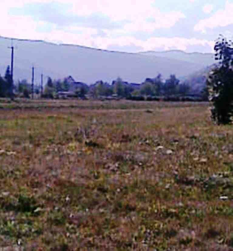 ТЕРМІНОВО земельна ділянка 0,32га, зображення 1