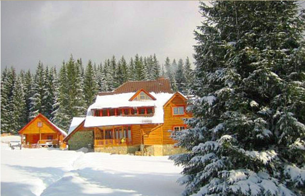 Паляница. Трехэтажный дом в лесу с камином на 6 номеров (12 мест).Удобный подъезд, зображення 1