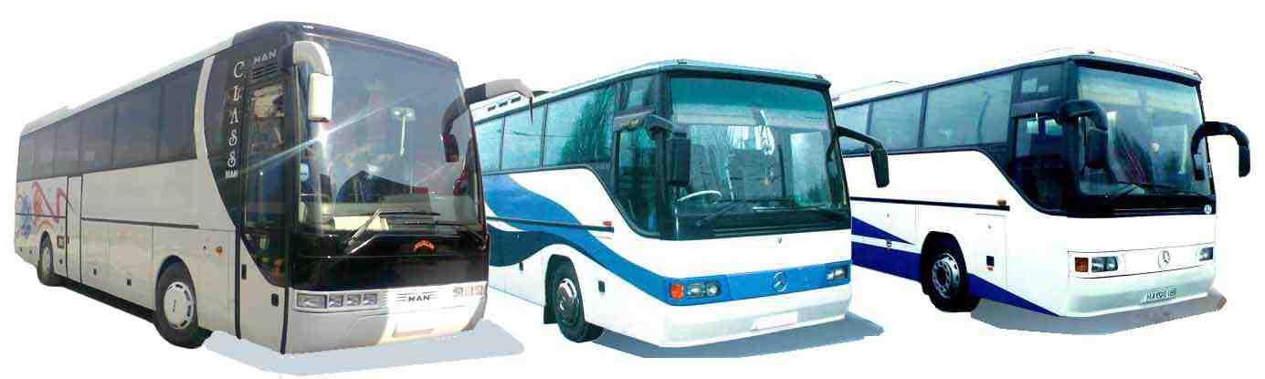 Пассажирские перевозки автобусами MAN S2000, Mercedes O304, Икарус, Дубрава, фото 1