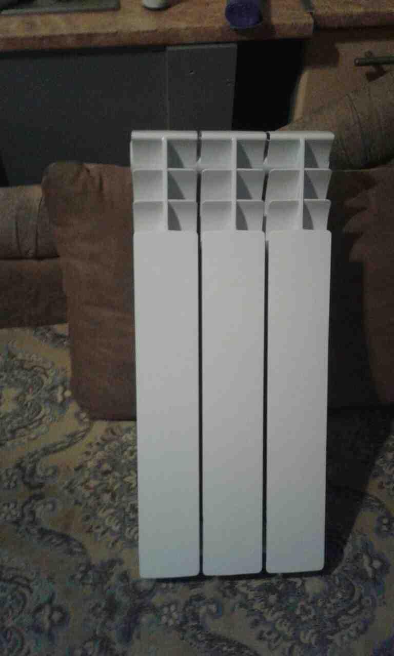 Продаю радіатор біометалевий Bertone, зображення 1
