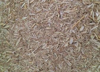 Зерновідходи, некондиція, бите зерно, зерносуміші. Закуповуємо дорого., фото 1